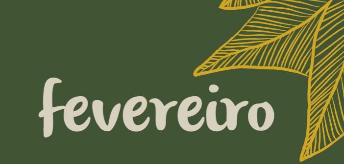 BVL-bannerweb-fev