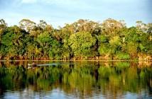 Amazônia. Foto: CC by 2.0/ Andre Deak