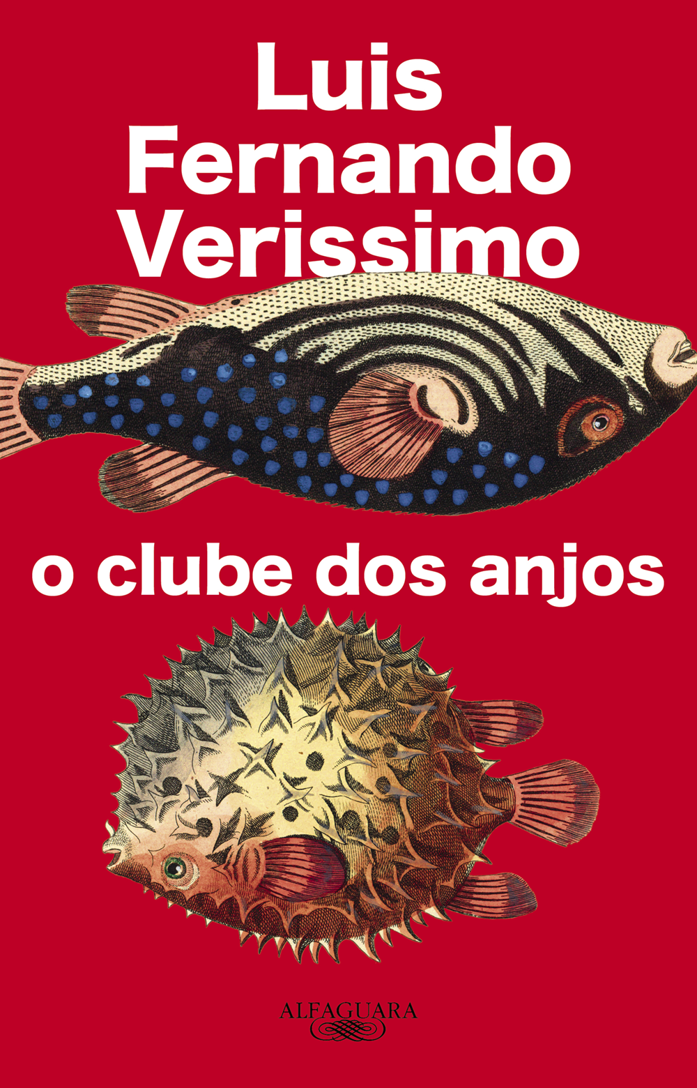 clube dos anjos_2ED